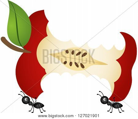 Scalable vectorial image representing a ants carrying apple core, isolated on white.