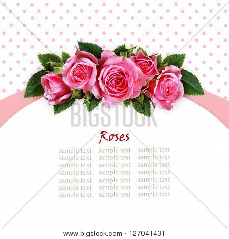 Pink rose flowers arc arrangement on white and spotted background