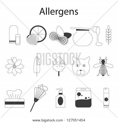 Allergens set. Vector illustration. Thin line. Food allergens, allergens of domestic, epidermal and pollen allergens.