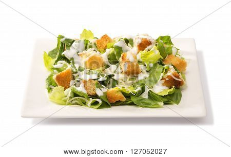 traditional classic Caesar salad in a square white plate
