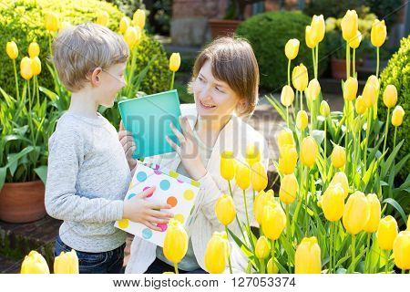 cheerful son gives her young mother present for mother's day in the park at spring time by the blooming tulips