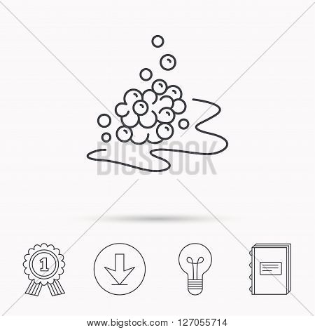 Bubbles icon. Foam for bathing sign. Washing or shampoo symbol. Download arrow, lamp, learn book and award medal icons.