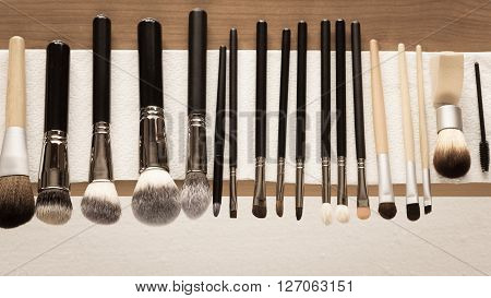 Beauty and makeup. Set of wet professional make up brushes after washing is drying