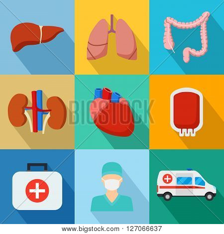 Set of Internal human organs icons. Vector illustration anatomy.