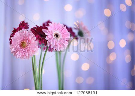 Bouquet of gerbers on blurred garland light background, closeup
