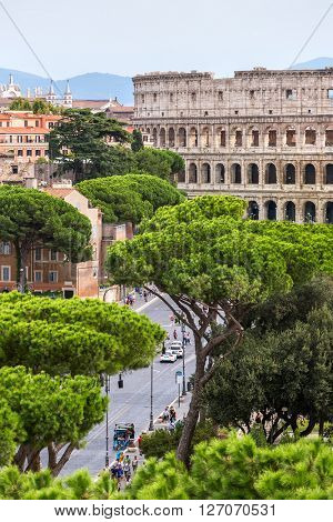 Exterior view of the Colosseum in Rome with green trees around.