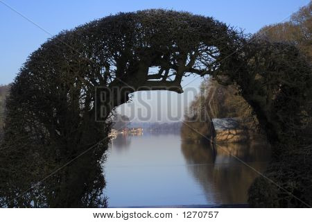 Lake Framed By A Hedge