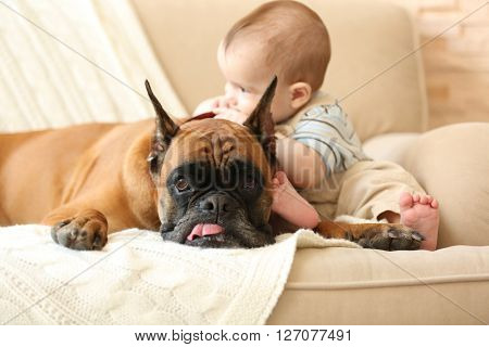 Little baby boy with boxer dog on a couch at home