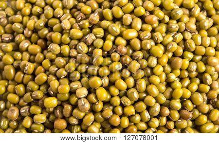 fresh green Mung beans background close up