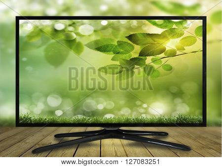 4k monitor isolated on white. tv with the nature view.  monitor display beautiful green grass and blue sky over the actual location. World Television Day concept idea.