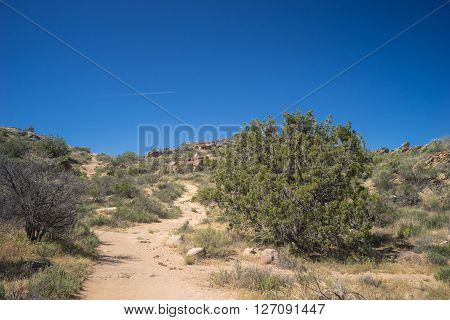 Dirt hiking trail through the hills of the Mojave desert.