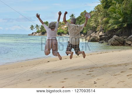 Happy elderly couple jumping  at tropical beach, back view