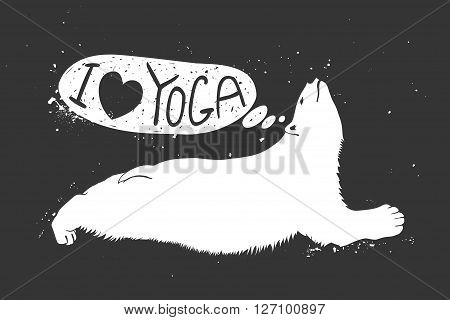 Polar bear doing urdhva mukha svanasana. I love yoga