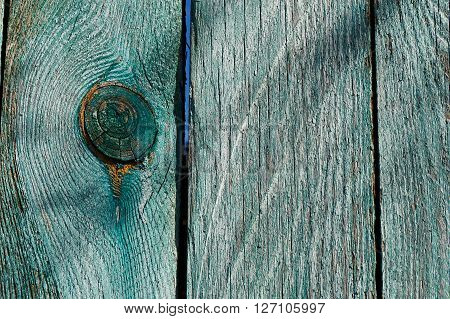 texture sawing logs on the longitudinal section showing the cut along the growth rings. The cut wood with cracks, painted in green and artistically crafted