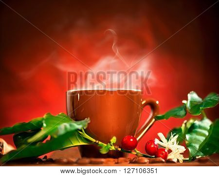 Coffee. Cup of steaming coffee with the real coffee ripe berries, flowers and leaves on a branch of coffee tree over red background