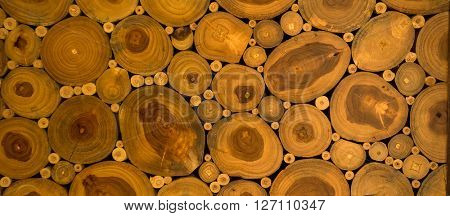 Texture ends wooden logs