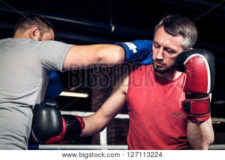 Two athletes sparred in the ring in boxing hall. One athlete in blue boxing gloves, the second in a red sports uniform.