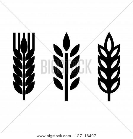 Vector black wheat ear spica icons set on white background