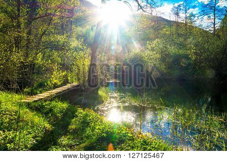 Magical Spring Sunny Day Over The River Ribnica
