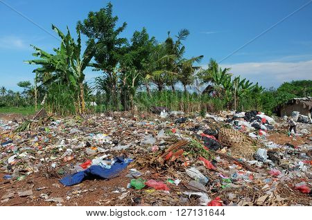 BALI INDONESIA - APRIL 10: Household rubbish and plastic bags contaminate rice fields and agricultural farmland at an illegal garbage dump on April 10 2016 in Ubud Bali Indonesia.