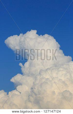 Fluffy Cloud On Clear Blue Sky