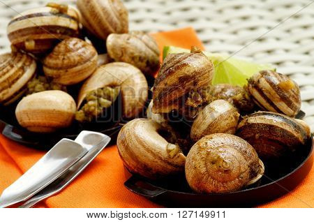 Delicious Escargot with Garlic Butter in Black Bowls with Lime and Snack Spoons on Orange Napkin closeup on Wicker background. Focus on Foreground