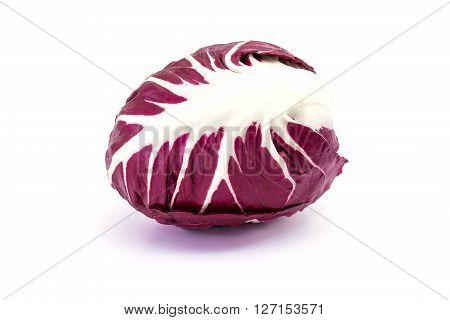Radicchio purple isolated on white background, raw food