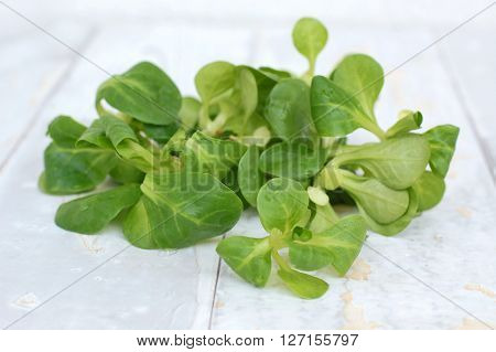 lambs lettuce on the wodden background front horizontal view