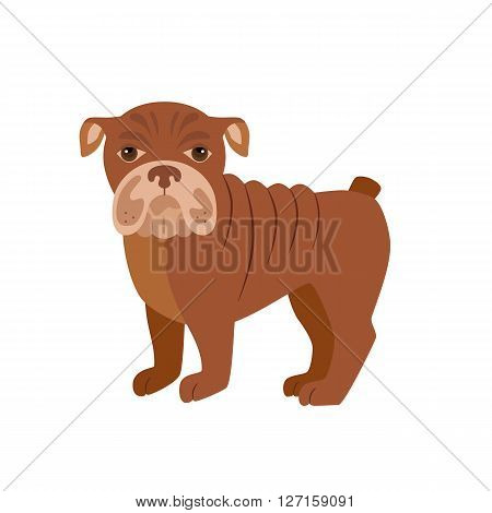 Flat bulldog pet illustration. Standing cute dog vector. Flat dog animal pet vector icon. Home cartoon standing bulldog in flat style. Dog colorful silhouette isolated on white background