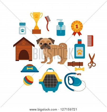 Dog training concept with pet care elements. Dog training: bowl, collar, leash. Dog training  poster vector illustration. Colorful dog training concept in flat style. Pet care dog training concept