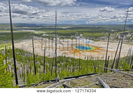 Grand Prismatic Spring from Picture Hill Yellowstone National Park Wyoming