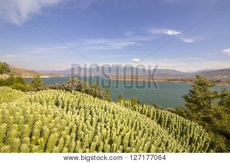 Panoramic view over Barrage Bin El-Ouidane high Atlas Morocco.