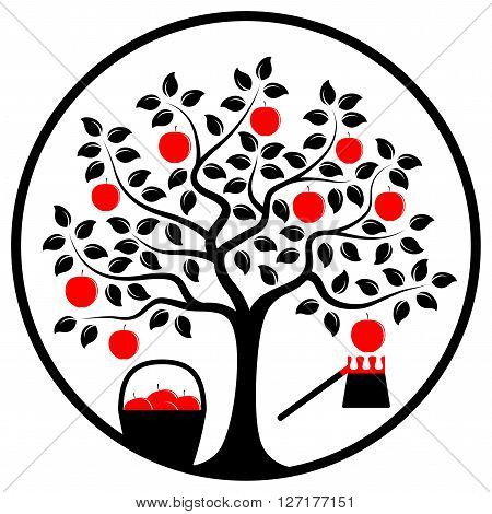vector apple tree with basket of apples and fruit picker in round isolated on white background