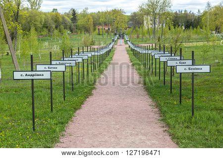 Memorial In Chernobyl