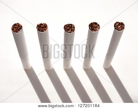 Cigarettes and tobacco products paper nicotine filter habit