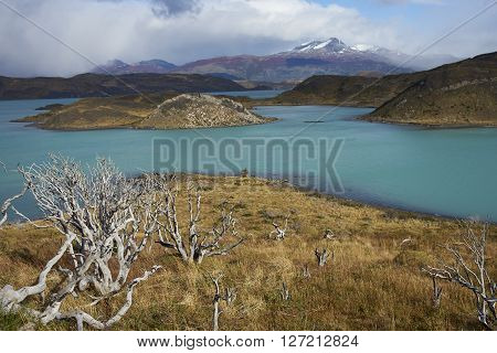 Snow capped peak of Cerro Ferrier (1,600 m) viewed across the blue waters of Lago Pehoe in Torres del Paine National Park, Patagonia, Chile