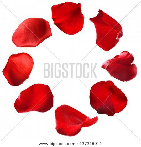 Round frame made of flower petals isolated on white