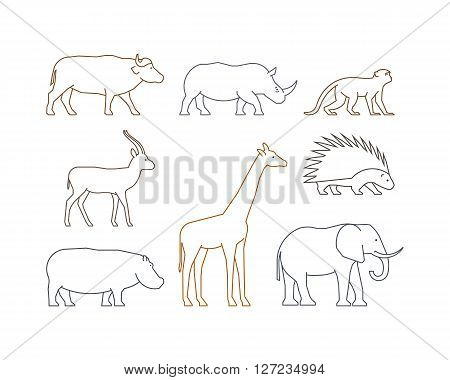 Colored vector line set of african animals. Outline isolated silhouettes african animals. Line icons gazelle rhino monkey and elephant.
