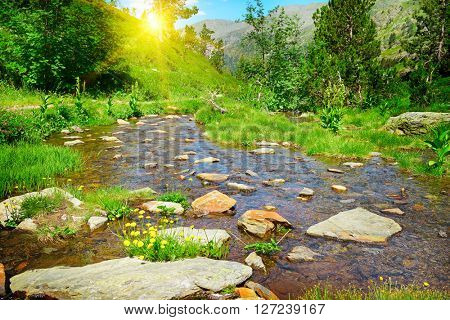 Sunset in mountains and a picturesque stream
