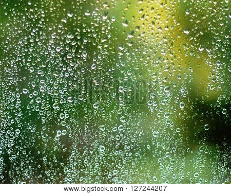 water droplets on glass window. green background