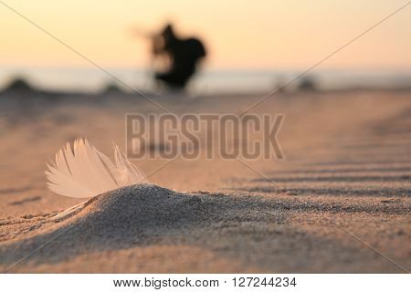 feather ?nd photographer silouette Baltic sea beach coast sand