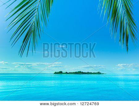 Fantasy Island Beckoning