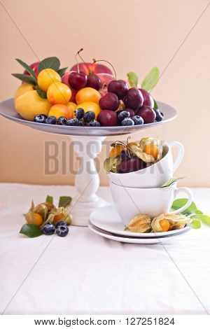 Summer fruitson the table with nectarines, apricots and cherry