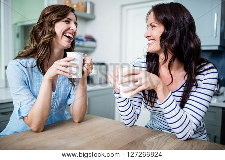 Happy female friends holding coffee mugs while discussing at table in kitchen
