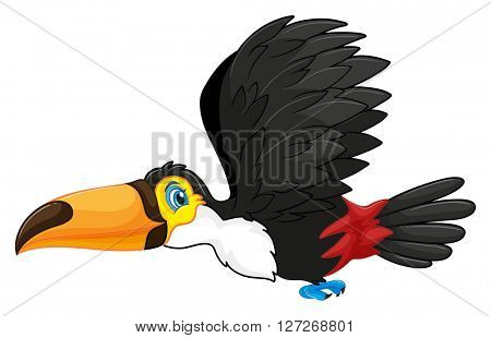 Toucan flying in the sky illustration