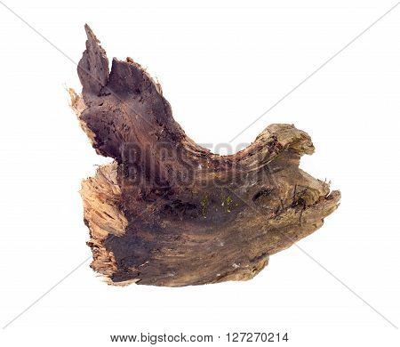 piece of wood ,snag on a white background
