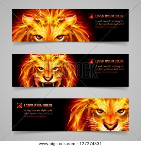 Set of banners with mystic lion in orange flame