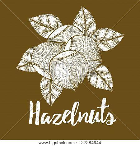 Hazelnut With Leaves Background
