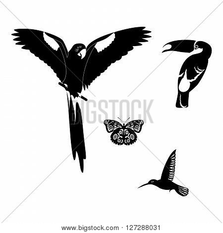 beautiful set of animals on the theme of tropics in black.