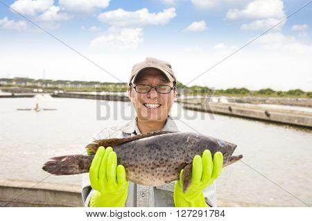 happy fisherman showing grouper fish before breeding fish pond